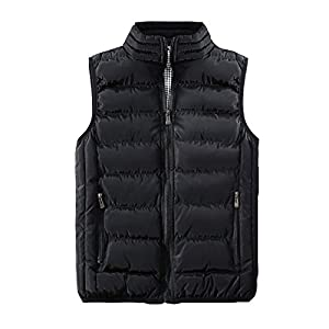 41hm17fQkLL. SS300  - DZX Electric Heating Vest/Jacket,Can Be Washed Warm Body Vest With USB Cable (Unisex / 5 Colors Optional),Black-2XL