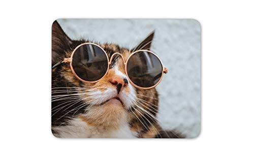 Cool Cat-tragende Sonnenbrillen Mauspad Pad - Lustige Hipster Seine Hers Gift # 16931