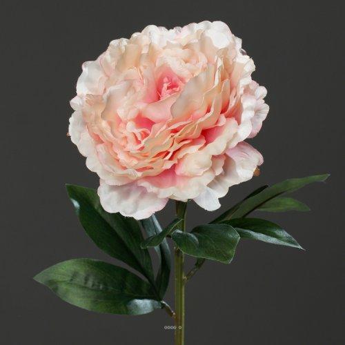 Artificielles - Pivoine Rose Tendre h 63 cm Tres Belle Tete - Choisissez Votre Couleur: Rose Tendre