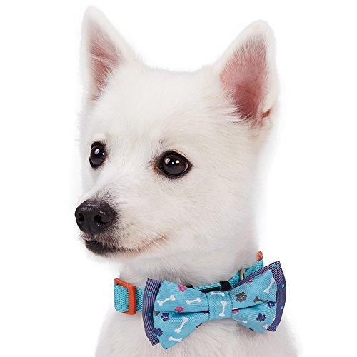 Knochen Hund Spiel Kostüm Des (Blueberry Pet Doppelpack Spiel & Spaß Designer Handgearbeitetes Hunde-Fliege Set, 7cm * 5)