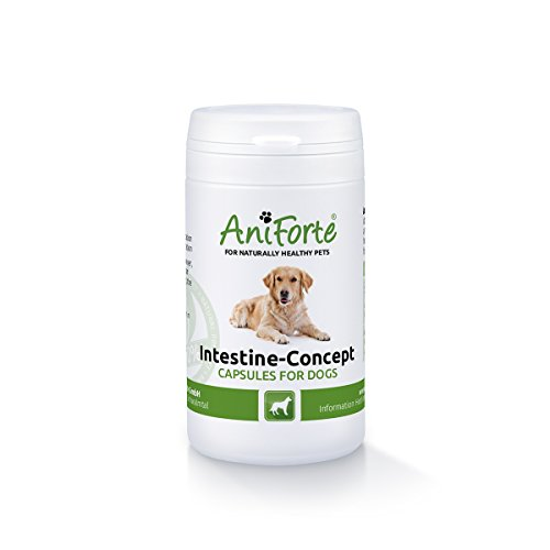 aniforte-intestine-concept-with-worm-wood-50-capsules-natural-product-for-dogs