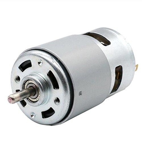 PETSOLA Drehmomentstarker Elektrischer 895 Motor Mit 12 V Gleichstrom Und 6000 U/Min Zur Drehzahlregelung (Mit Motor Drehzahlregelung)