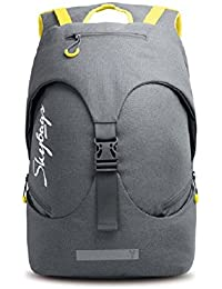 Skybags Ion 33 Ltrs Grey Laptop Backpack (LPBPION3GRY)