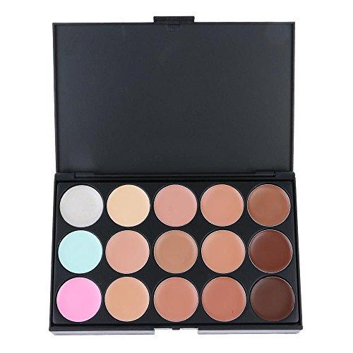 VANKER 15 Couleurs Correcteur Palette d'ombres Kit Avec 11Pcs Maquillage Pinceau à Poudre en Bambou