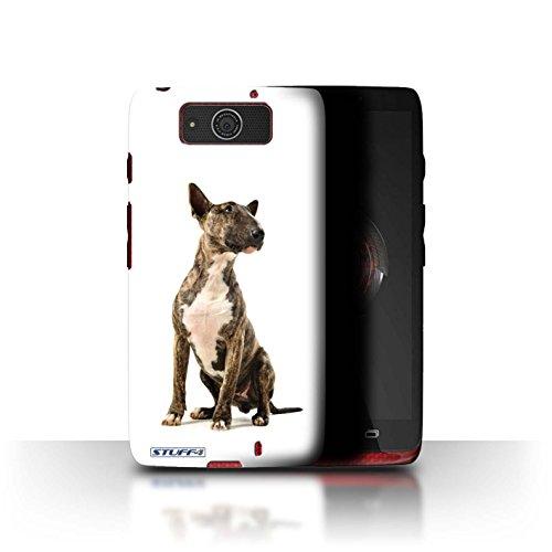 Stuff4 Hülle / Hülle für Motorola DROID Ultra/XT1080 / Bull Terrier Muster / Hund/Hunde Kollektion