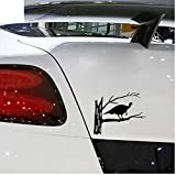 Yangjingkai 2 pezzi Turchia Hunter Caccia agli uccelli Vinile Auto-Styling Adesivo per auto Decal Grafica Nero 15,5 cm * 12,7 cm
