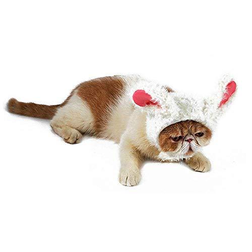 JSMeet Katzen/Hundekopfbedeckung, süßes Kostüm Cosplay Lion Panda Rabbit Perücke Anzieh mit Ohren Hüte für Hunde Katzen Welpen Kätzchen, Pet Charming Accessoires für Halloween Christmas Holiday Party