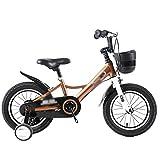 BaoKangShop Draisiennes Vélo for Enfants Poussette Maternelle vélo antidérapant Enfants de Toutes Tailles Vélos et Véhicules pour Enfants (Color : Gold, Size : 14inches)
