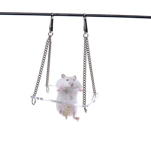 Swing Jouets en acrylique transparent Sport Jouets d'exercice pour hamster souris Rat
