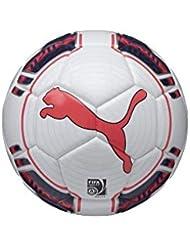 Puma evoPOWER 1 ballon blanc