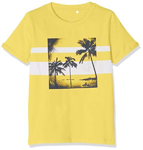 NAME IT Baby-Jungen Nmmvux Sl Top H T-Shirt