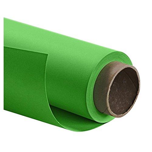 Papierhintergrund 2,72x11m, stinger green (Green Stinger)