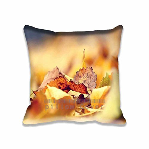 Simple Colors and Pattern Throw Pillow case/Copricuscini