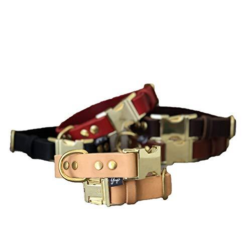 Schnellverschluss Hundehalsband in Tan Leder und Messing Hardware für große und mittelgroße Hunde, Höhe 2,5 cm, bunte Hundehalsband, Breakaway Hundehalsband -