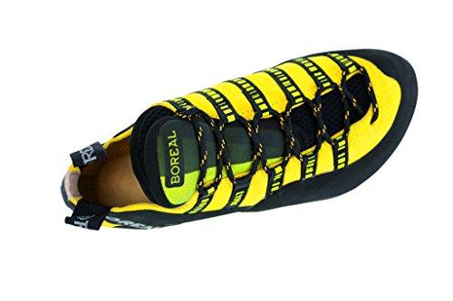 Scarpe Multifunzionali Lince Boreali Unisex Giallo