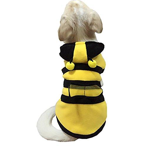 Moolecole Biene Haustier Kostüm Hund Kleider Chihuahua Teddy Bekleidung Katze Kleidung Für Herbst Und Winter Gelb M (Biene Kostüme Für Hunde)