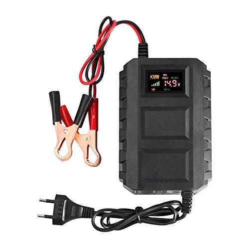 TOOGOO Intelligente 12V 10A Caricabatteria per auto al piombo e acido per auto EU