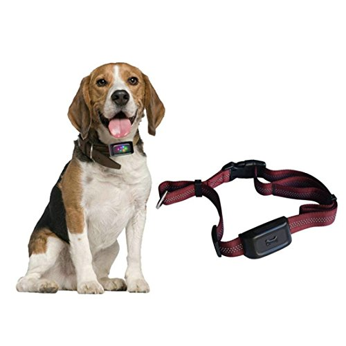 Zimingu GPS seguimiento para mascota, largo tiempo en espera, minilocalizador para mascota,...
