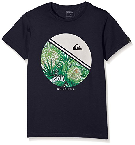 quiksilver-ss-classic-tee-youth-free-wheelin-t-shirt-garcon-noir-fr-10-ans-taille-fabricant-s-10