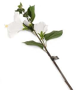 Closer 2 Nature F079WL Floral Elegance, Künstlicher Hibiskus, 92 cm, Einzelstamm, weiß