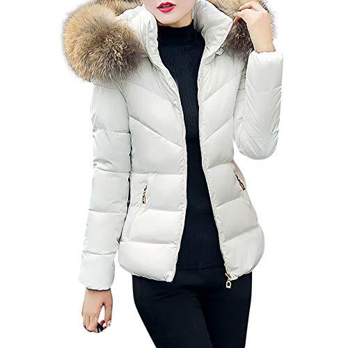 OSYARD Damen Winterjacke Outwear Daunenmantel Leichte Windmantel mit Reißverschluss Kurzjacket, Frauen Dicke Oberbekleidung Kapuzenmantel Kurze Dünne Baumwolle Gefütterte Jacken ()