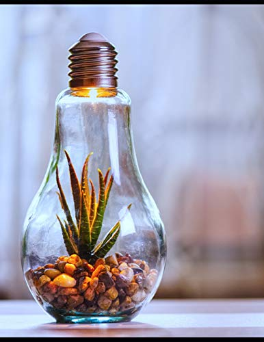 Notebook: Environmental protection nature light bulb bulbs lights lighting fitting room bed home house Button Flower Cord