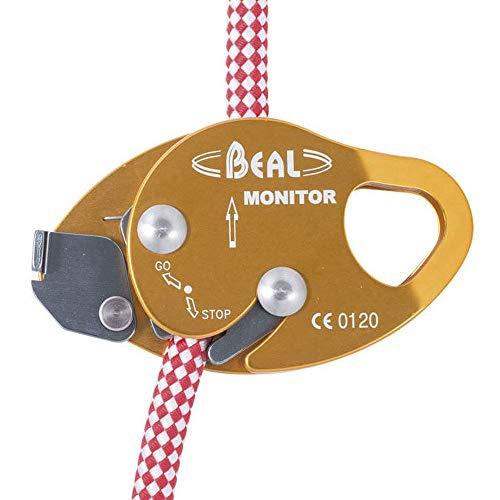 Beal Monitor