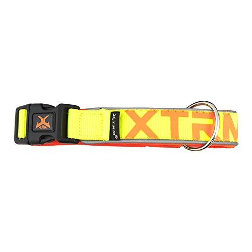 Nayeco collar x-trm neon flash amarillo 38mm x 65-75