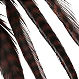 Donna Bella Hair Extension Feathers, Str...