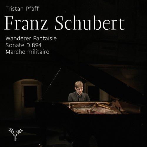 Preisvergleich Produktbild Wanderer-Fantasie / Sonate d.894