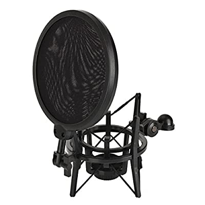 ATian Audio Professional Condenser Microphone Mic Studio Sound Recording W Shock Mount from ATian