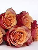 Carnet de Notes: Grand journal personnel de 121 pages lignées avec couverture « Roses - Chausson de danse » (Mon journal personnel ligné)