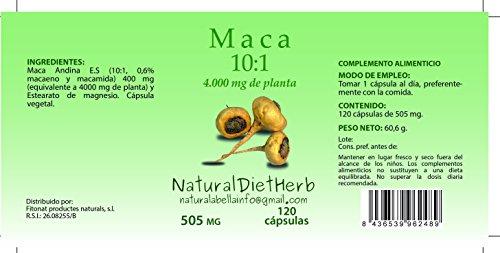 Maca extracto 10:1 120 caps/Una al día/Para tres meses. 100% Natural Sin Gluten no GMO Apto Veganos