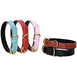 Petween Collares básicos clásicos Acolchados de Cuero para Mascotas, Gatos, Cachorros, Perros medianos y pequeños