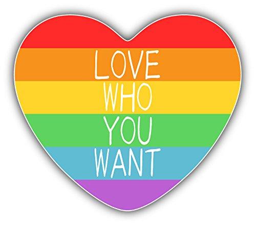 LGBT Rainbow Heart Flag Love Who You Want Auto-Dekor-Vinylaufkleber 12 X 10 cm