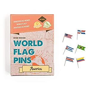 Miss Wood Pins with Flags of the World Sticker, America, 15.6 x 11 x 2 cm Pink
