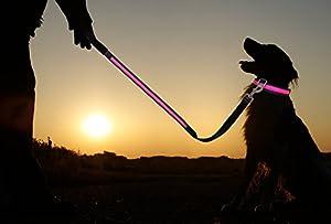 Mit der LED-Hundeleine von der Marke PRECORN sind Hund und Halter für alle anderen gut sichtbar. Diese Hundeleine ist mit einem LED-Lichtstrang versehen. Die Gesamtlänge der Leine beträgt ca. 1,2 Meter. Der Unterschied zu sonst handelsüblichen Pro...