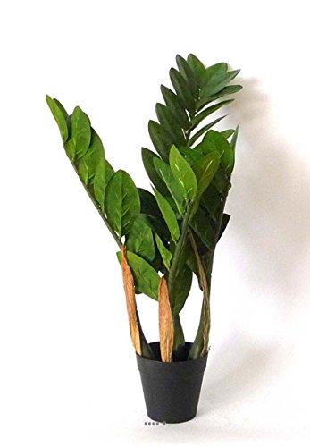 Kunstpflanze Zamioculcas künstlich, im Topf Gewichtsausgleich h 51 cm