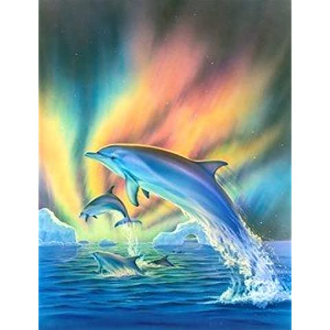 s3534mgl Cosmic Dolphin (Robin Koni) Fine Arte de la pared nostálgico retro–Placa metálica decorativa, diseño con texto Inglés