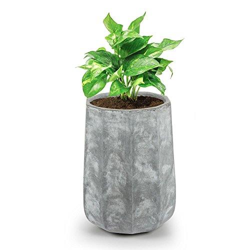 Pflanzkübel für draußen grau | Was-Einkaufen.de