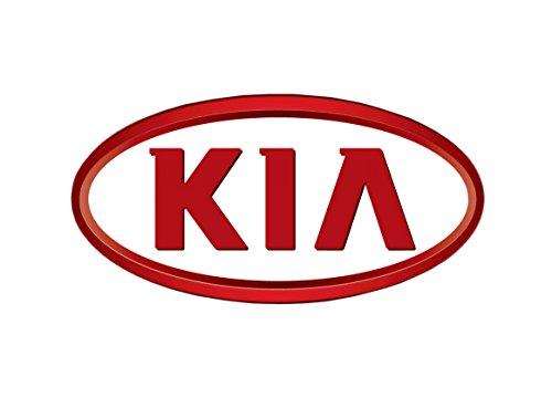 Preisvergleich Produktbild KIA Lack Farbe KFZ Scratch Pen und Lack Touch Up für Kai Kia Rio Sportage Sorento Picanto Ceed Samen Hybrid 4x 4
