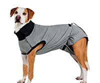 Combinaison de protection pour le corps après la chirurgie L 55 cm gris, T-shirts, sweatshirts, vêtements, chaussures, aide à la rééducation et muselière, chiens