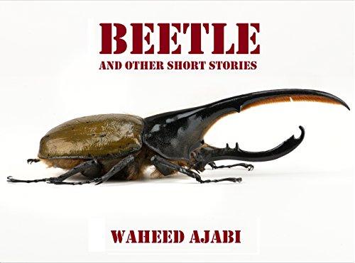 beetle-english-edition