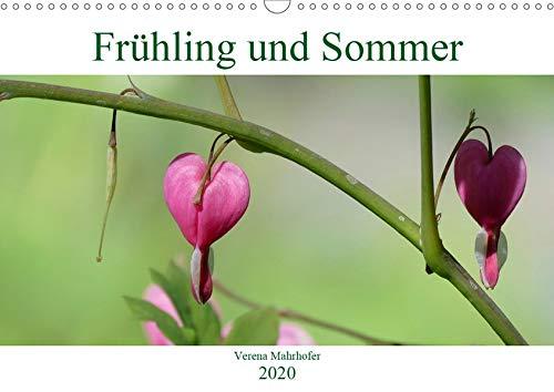 Frühling und Sommer (Wandkalender 2020 DIN A3 quer): Farben der Natur (Monatskalender, 14 Seiten ) (CALVENDO Natur)