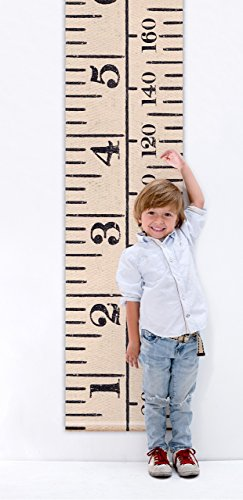 vintage-inspired-antique-white-printed-height-chart-rollable-with-dual-measurement-7ft-205cm-tall