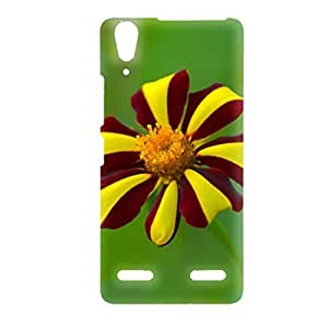 Clapcart Flower Printed Back Cover for lenovo A6000 Plus -Colorful