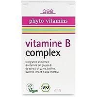 GSE Bio Vitamin B complex Tabletten 60St. preisvergleich bei billige-tabletten.eu
