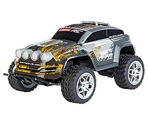 Carrera Toys- Dirt Rider Coche (Carrera RC 370160123)