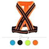 Jamory Hundegeschirr X Geschirr Brustgeschirr mittelgroße Grosse Hunde reflektierend Soft (L, Orange)