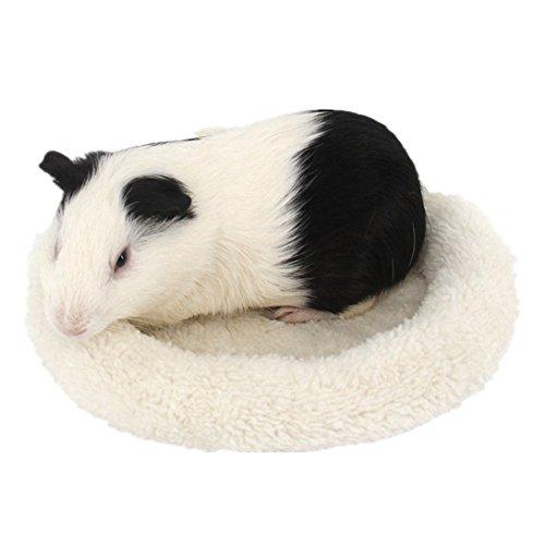 Bwogue Hamster Bett, rund Samt Warm Sleep Matte Pad für Hamster/Igel/Eichhörnchen/Mäuse/Ratten und andere kleine Tiere